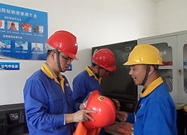 公司HSE审计组到台州新农开展审计工作
