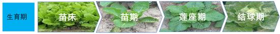 微信图片_20200527095257_副本.png